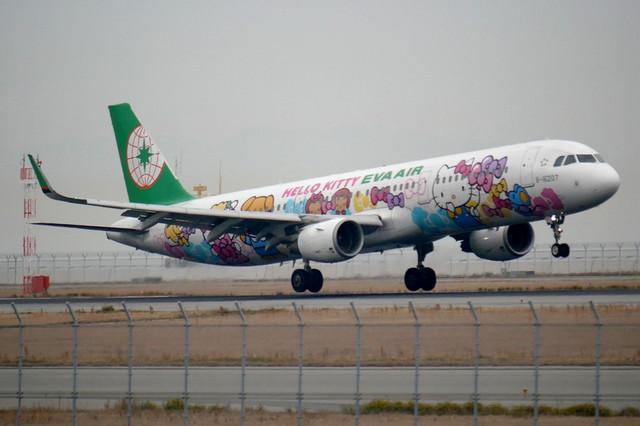 A310kitty_471